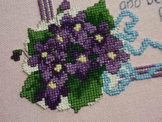 Violets closeup